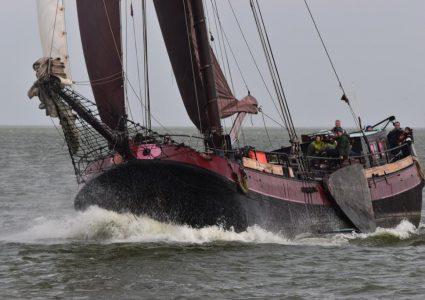 teambuilding auf dem IJsselmeer oder Wattenmeer