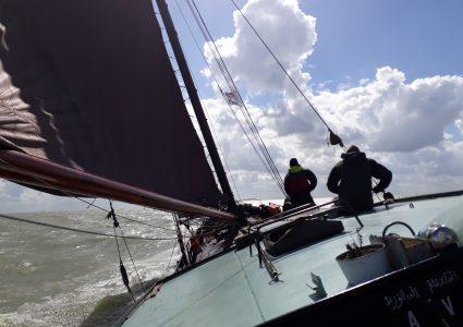segelworkshop auf dem IJsselmeer oder Wattenmeer
